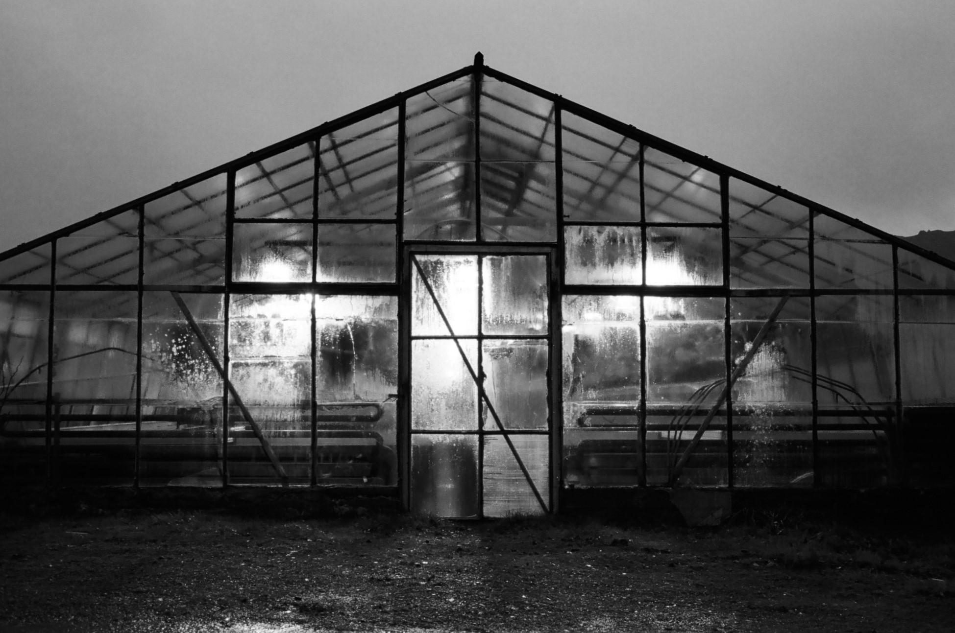 Greenhouse in Hveragerði