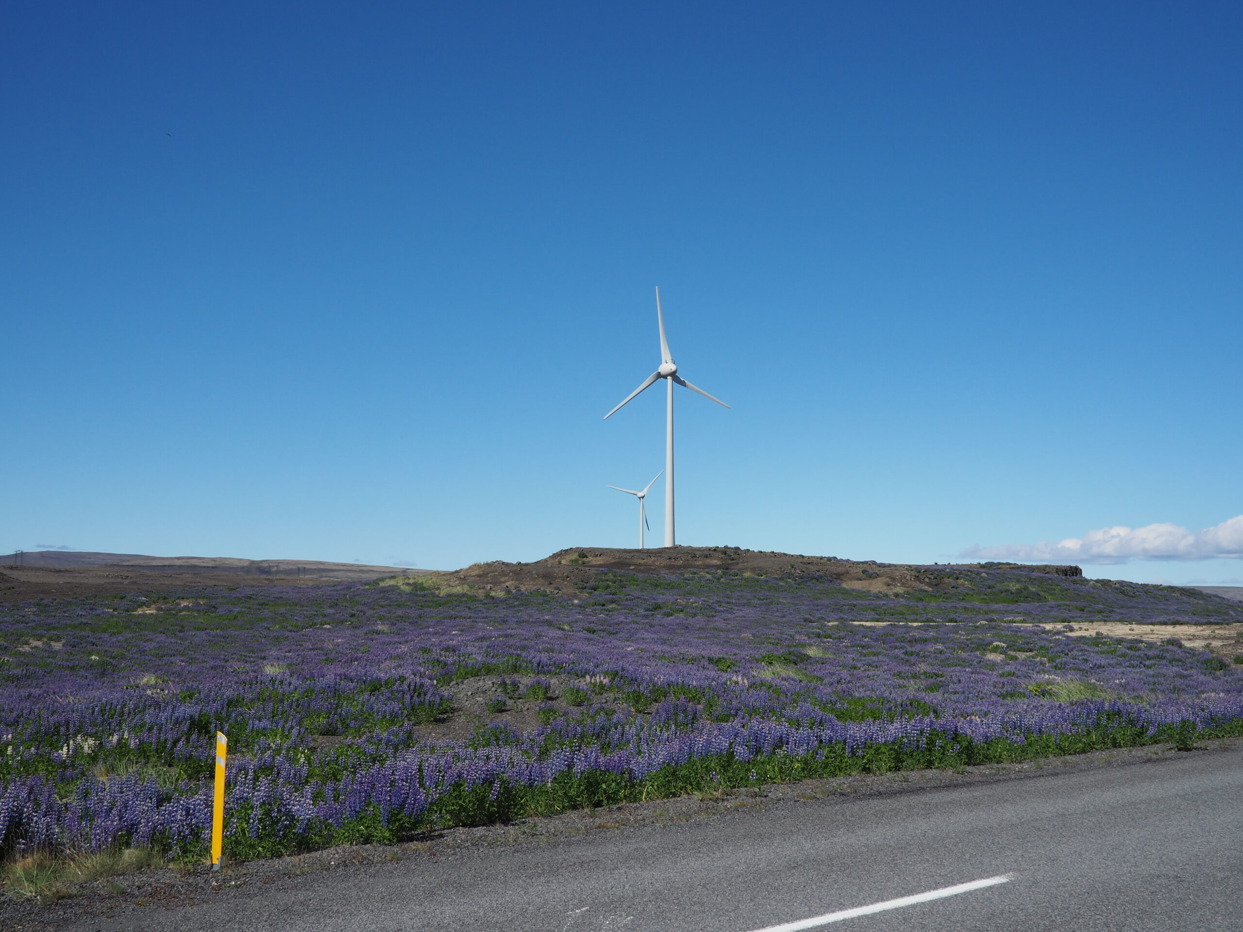 Hafið - Iceland's only wind turbines